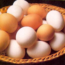 alimentos. huevo